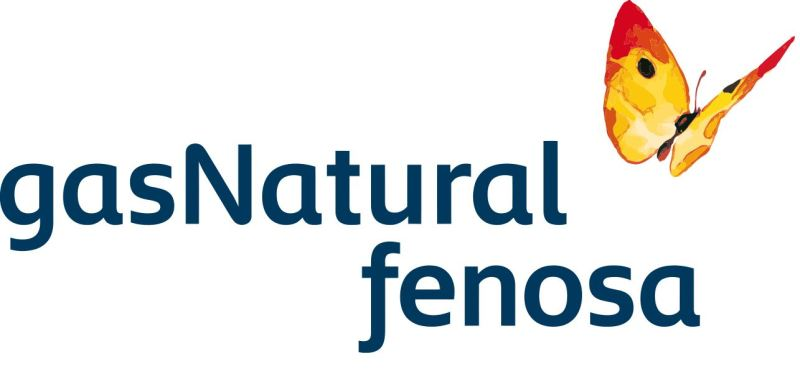 Gas-Natural-Fenosa-Leer-contador